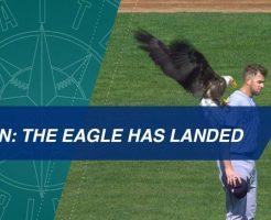 mlb5 246x200 - MLB公式が選んだ先週の最高の瞬間ベスト5の動画。元巨人の監督も!