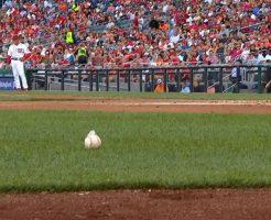 mlbnpb 246x200 - MLBの使用球はなぜ滑るのか。日本のNPB公式ボールとは製造方法が違う