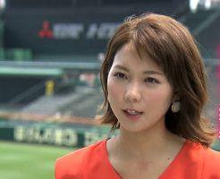2431 246x200 - ヒロド歩美の野球選手との画像。熱血甲子園でお馴染み阪神ファンの美人アナ