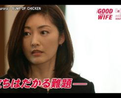 1 5 246x200 - グッドワイフ初回1話を見た感想。武田鉄矢登場回で水原希子が美人!