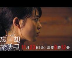 7 246x200 - 忘却のサチコの第7話。宮崎で俊吾さんと再会。鶏の炭火焼きと朝うどん回