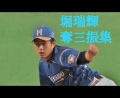 161 246x200 - 堀瑞輝(日ハム)の投球。16年ドラフト1位の将来のエース格左腕