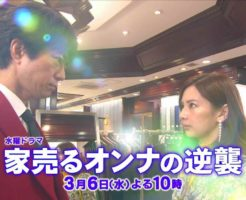 9 246x200 - 家売るオンナの逆襲9話の動画を見た感想。小野真弓と酒井若菜の登場回