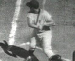 2 1 246x200 - ロジャー・マリスのシーズン本塁打記録更新。2年連続MVPの寡黙な強打者