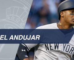 8021 246x200 - ミゲル・アンドゥハーの打撃。ヤンキース強打の若手サードで18年に活躍